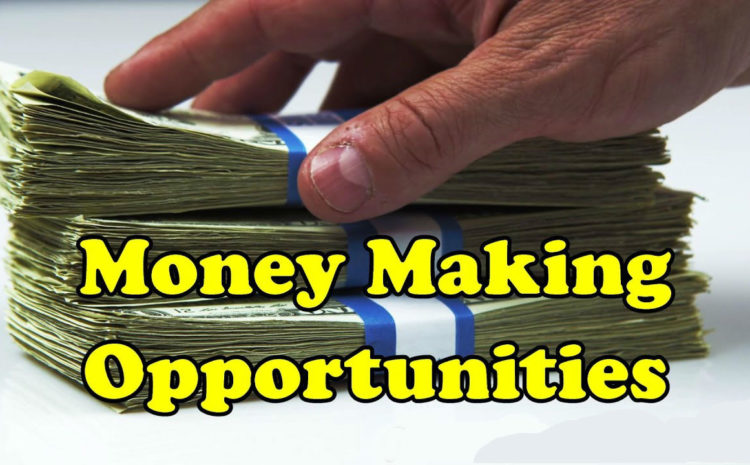 How To Match Your Skill Sets To Money Making Opportunities